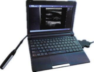 Veterinär-Ultraschall-Scanner